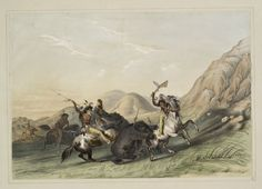 Attacking the Grizzly bear. From New York Public Library Digital Collections.