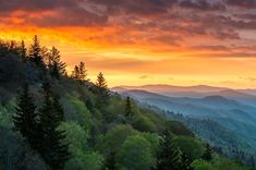 Great Smoky Mountains National Park Caroline du Nord