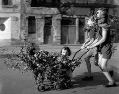 Robert Doisneau -- Camouflage, Liberation of Paris from the Nazis, August 1944 Henri Cartier Bresson, Black White, Black And White Pictures, Robert Doisneau Photos, Old Photos, Vintage Photos, Photos Web, Nice Photos, Paris Photos