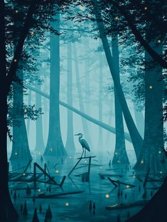 A Hidden Stillness is a new art print by Nicholas Moegly. Somewhere in the backwoods of the South a forgotten boardwalk slowly fades into the swamp. All that's heard is the drone of katydids and frogs as fireflies begin to light up the night. Forrest Illustration, Landscape Illustration, Digital Illustration, Illustration Styles, Fantasy Landscape, Landscape Art, Fantasy Art, Background Drawing, Psy Art