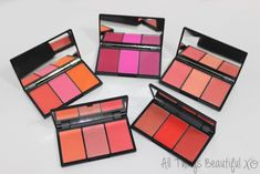 My Sleek Blush by 3 Palettes with Swatches & Reviews! from All Things…