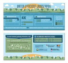 Water Efficient Landscaping #ArkLabs