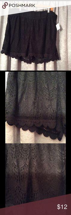 Black Lace Shorts Black elastic Lace shorts BONGO Shorts
