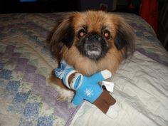 Mesha's sock monkey!