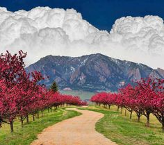 Bolder, Colorado, heard great things about this place, would love to visit!