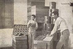 """Um pouco da história visual das fábricas que, ao seu tempo, fizeram grande sucesso, como esta, em São Paulo, da famosa manteiga """"Viatucto"""",..."""