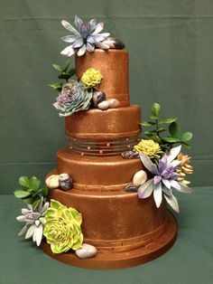 Chocolate Wedding cake with Succulents and Stones by The Vagabond Baker-custom cakes and sweets with a global... (2/7/2013)  View details here: http://cakesdecor.com/cakes/47213