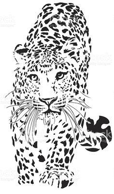 Leopard illustration royalty-free stock vector art