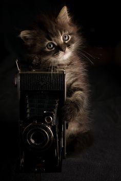 ♡Soooooo cute♡