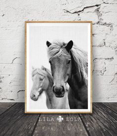 Horse Photography Black and White Photo Wall Art by LILAxLOLA