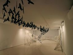 """Paco Aguilar """"Otros hábitats""""  Instalación 2012 /Medidas variables  (foto de Fernando Robles)"""