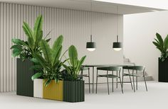 Most Modest launched new minimalist products with a universal feel that could easily work in an office or residential environment. Room Interior Design, Interior Decorating, House Plants Decor, Plant Decor, Conference Table, Glass Diffuser, Modern Colors, Wall Shelves, Minimalist Design