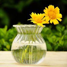 Hydroponic Plants Stripe Shape Glass Bottle Vase Home Garden Wedding Party Decoration