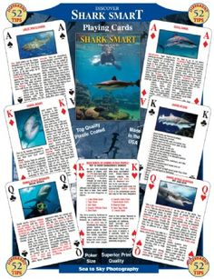 Shark Smart Playing Cards at theBIGzoo.com, a family-owned store. Check our sales & FREE Shipping.