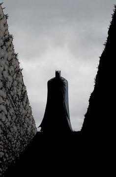 BATMAN INC #9 | Exclusive! The DC Universe Reacts To Robin's ShockingDeath