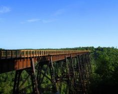 Kinzua Bridge State Park opened in 1970. In 1977, the Kinzua Viaduct was place on the National Register of Historic Landmarks. The bridge stood for 121 years before it partially collapsed under the powerful winds of a tornado in 2003