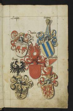Пряжа Дрезден: Вид на заводе: Саксонский Племенная книга - Mscr.Dresd.R.3