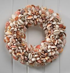Nantucket Shell Wreath traditional-wreaths-and-garlands