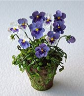 1:12 scale dollhouse Miniature Pansies for a discriminating collector. These are works of art.
