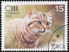 Cuba 2007 Cat Stamps