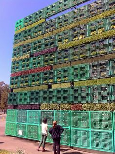 Australia Plants Worlds Largest Pallet Garden. A couple hundred plastic shipping crates were used to create this four-sided vertical edible garden in the shape of a cube.