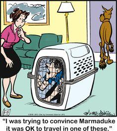 Tumblr Cartoon, Cartoon Dog, Funny Animal Pictures, Funny Animals, Cute Animals, Animal Pics, Funny Dog Jokes, Funny Dogs, Funny Memes