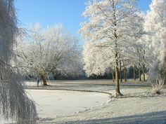 Vinterlandskap.