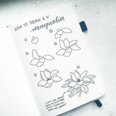 All your inspirational and beautiful spring bullet journal layouts right here! Get spring-themed trackers, monthly layouts, weekly spreads, and decoration assistance for a beautiful bujo to commemorate one of the best seasons of the year. Bullet Journal Set Up, Bullet Journal Layout, Bullet Journal Inspiration, Journal Ideas, Doodle Drawings, Doodle Art, Zen Doodle, Flower Drawing Tutorials, Flower Drawings