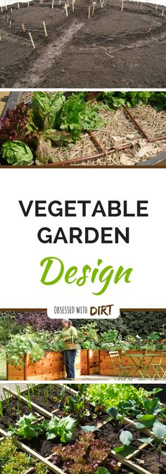 Starting a new vegetable garden can feel overwhelming. Proper vegetable garden design takes research, planning and plenty of experience. That's why we've put together this cheat sheet for you.