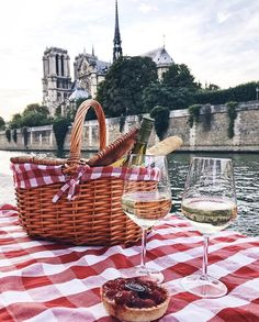 Picnic in Notre Dame view!