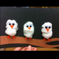 Owl Babies (Note to self: think about using tempera dry paint to make orange to turn cotton in to pumpkins and they could be sitting on a vine.)