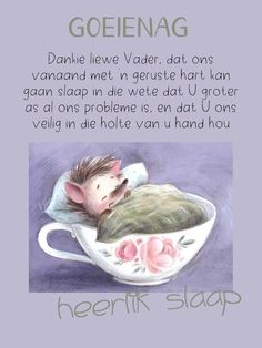 Afrikaanse Quotes, Goeie Nag, Goeie More, Sleep Tight, Good Morning Quotes, Good Night, Prayers, Messages, Friends