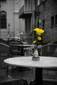 **Yellow Flowers at New Orleans Open Cafe, by Yohsuke Ikebuchi