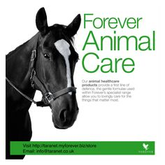 Forever Living is the world's largest grower, manufacturer and distributor of Aloe Vera. Discover Forever Living Products and learn more about becoming a forever business owner here. Aloe Vera Juice Drink, Forever Freedom, Veterinary Colleges, Forever Business, Forever Living Products, Pet Care, Health Care, Personal Care, Horses