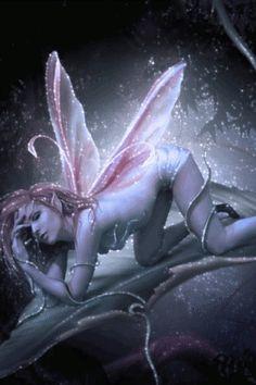 Fantasy Fairytale pictures | Fantasy fairy