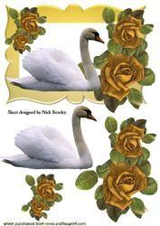 Mooie Witte Zwaan Met Gouden Rozen