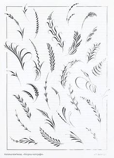 В конце прошлой недели, в ленте новостей на ФБ, случайно увидел объявление, что во Львове в субботу состоится МК по флориш-калиграфии. Скажем, в каллиграфии Лео не то, чтобы ноль, скорее какое-то совсем отрицательное значение, но дело это привлекает. Подумал Лео, подумал и решил пойти посмотреть.… Flourish Calligraphy, Calligraphy Drawing, Copperplate Calligraphy, Calligraphy Practice, Calligraphy Handwriting, Calligraphy Alphabet, Caligraphy, Modern Calligraphy, Penmanship