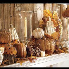Different size hurricane/vases, pumpkins for Mantle/Display