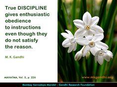 Mahatma Gandhi Quotes on Discipline Mahatma Gandhi Quotes, Discipline Quotes, Herbs, Thoughts, Quotes By Mahatma Gandhi, Herb, Ideas, Medicinal Plants