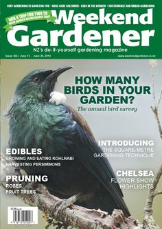 #365 looks at different methods of attracting birds to your garden, why gardening is good for you, and the kids get dirty with a garlic project.