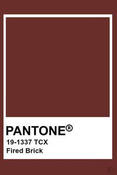 Pantone Fired Brick Pantone Tcx, Pantone 2020, Paint Swatches, Color Swatches, Grass Texture, Pantone Colour Palettes, Pantone Colours, Brown Pantone, Brick Colors
