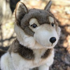 Romulus Romulus is 18 Inches in size He is realistic looking and makes a statement in any collection. Our plush is bigger and properly stuffed Collect all our realistic plush Romulus is Hand Made. The making of Romulus was fun. You can see from his images as we added so much more detail to bring it as realistic to a live Timber Wolf as possible. From an Air Brushed Nose to Side Pinched Eyes. We added Detailed Paws as well as Air Brushing and Tri Colored Front. Funny Animal Videos, Funny Animals, Wolf Stuffed Animal, Wolf Plush, Mister Wolf, Animal Mashups, Plush Animals, Plushies, Animal Pictures