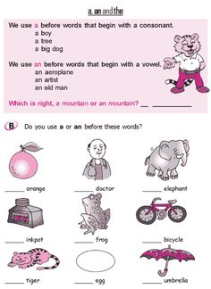 Grade 2 Grammar Lesson 3 Articles - a, an and the (2)