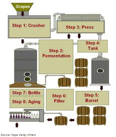 The wine making process