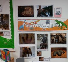Inspiring the next generation of palaeontologists.
