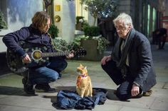 a-street-cat-named-bob-06