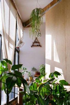手前の緑、奥の鉢の緑。そして天井から吊り下げた緑。  高さと種類を違えれば、奥行きと広がりを生み、そこに庭や自然のありようを感じることができます。