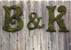 Moss graffiti/ eco graffiti/ green graffiti
