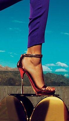That Gucci Shoe!!!