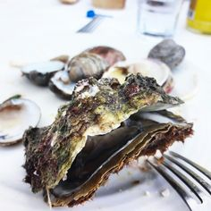 Fresh oyster in South Crete! Delicious seafood in a fish-village called Lentas.